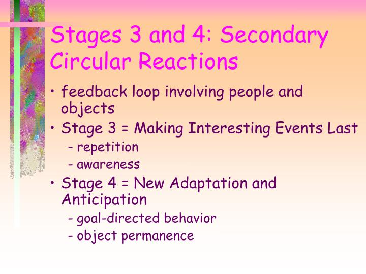 Stages 3 and 4: Secondary Circular Reactions