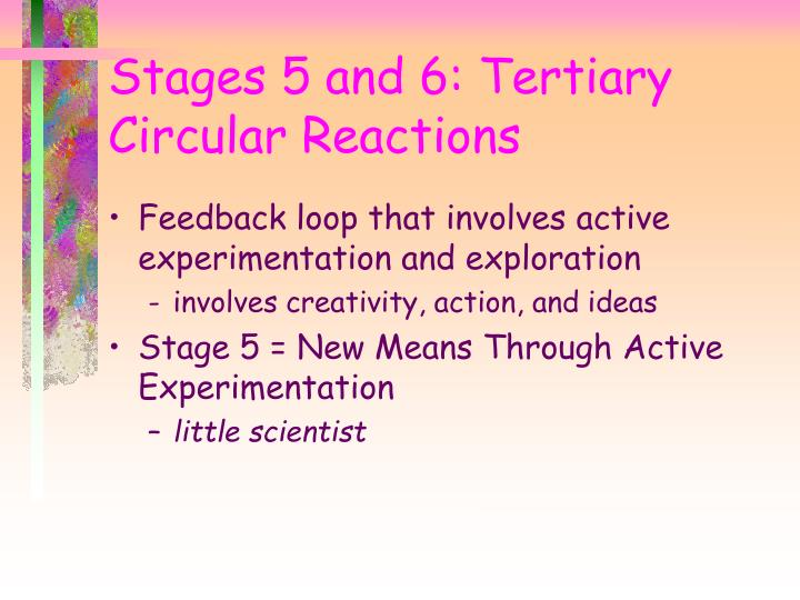 Feedback loop that involves active experimentation and exploration