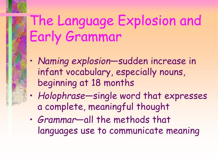 The Language Explosion and Early Grammar