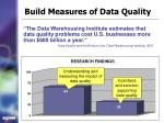 build measures of data quality