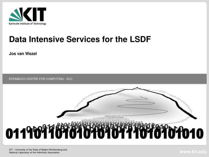 data intensive services for the lsdf n.