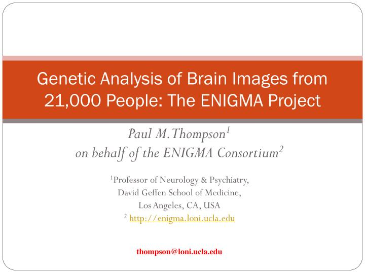 genetic analysis of brain images from 21 000 people the enigma project n.