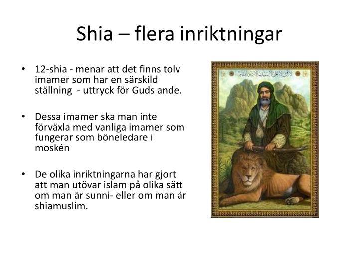Shia – flera inriktningar