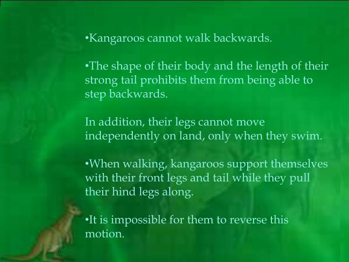 Kangaroos cannot walk backwards.