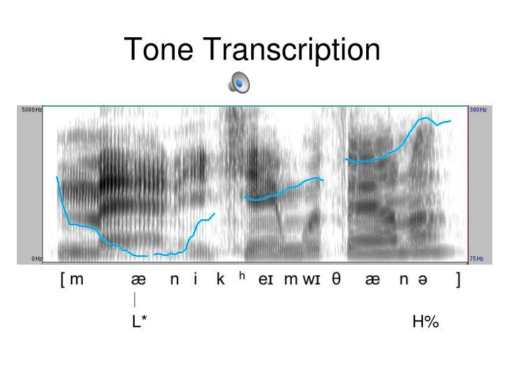Tone Transcription