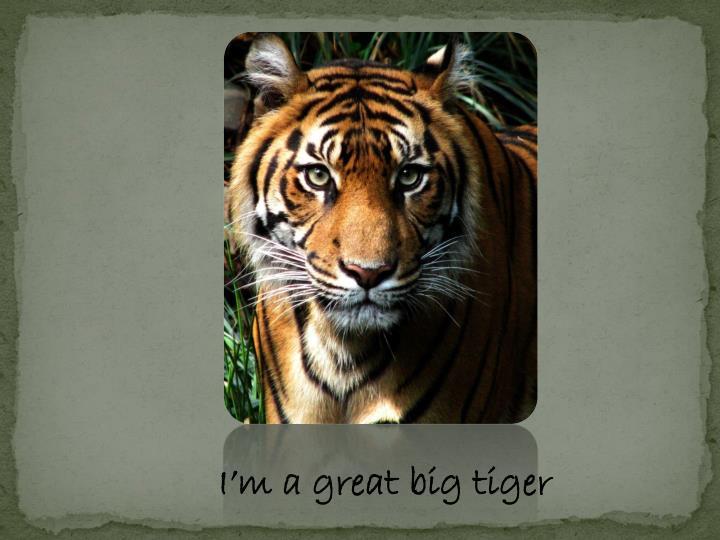 I'm a great big tiger