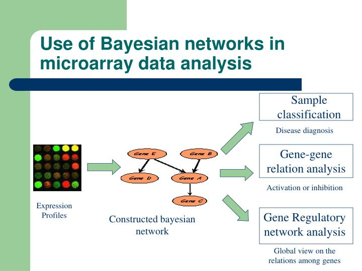 Use of bayesian networks in microarray data analysis
