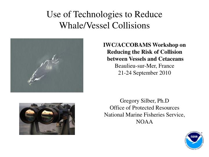 use of technologies to reduce whale vessel collisions n.
