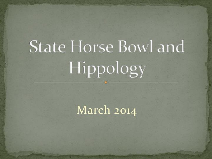 state horse bowl and hippology n.
