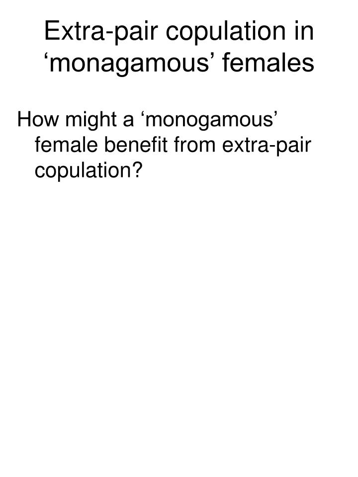 Extra-pair copulation in 'monagamous' females