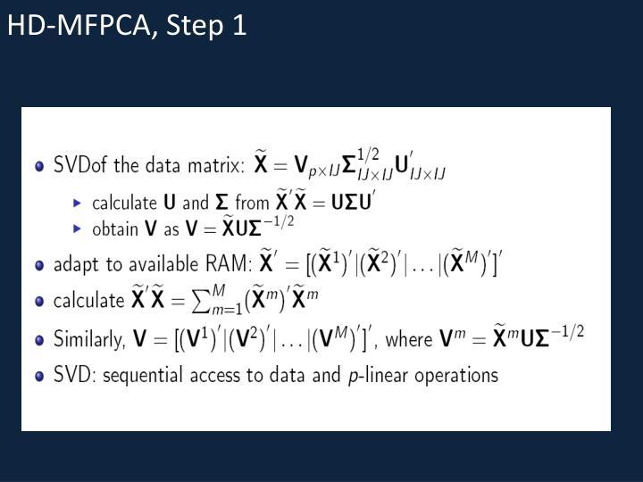 HD-MFPCA, Step 1