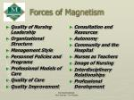 forces of magnetism