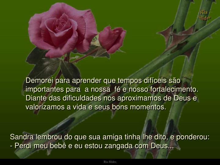 Demorei para aprender que tempos difíceis são importantes para  a nossa  fé e nosso fortalecimento. Diante das dificuldades nos aproximamos de Deus e valorizamos a vida e seus bons momentos.