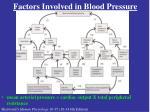 factors involved in blood pressure