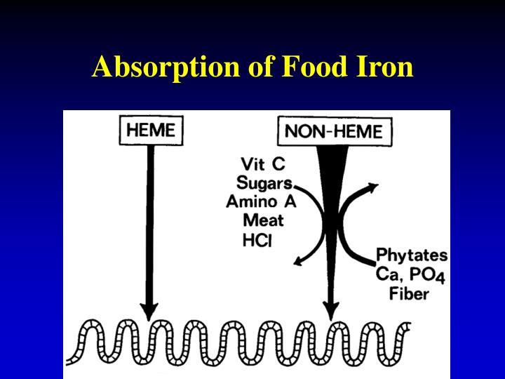 Absorption of Food Iron