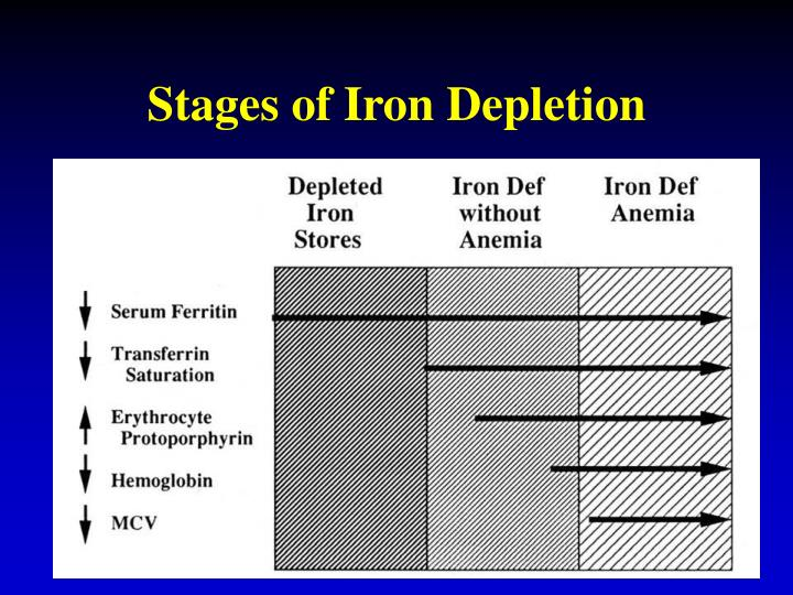 Stages of Iron Depletion