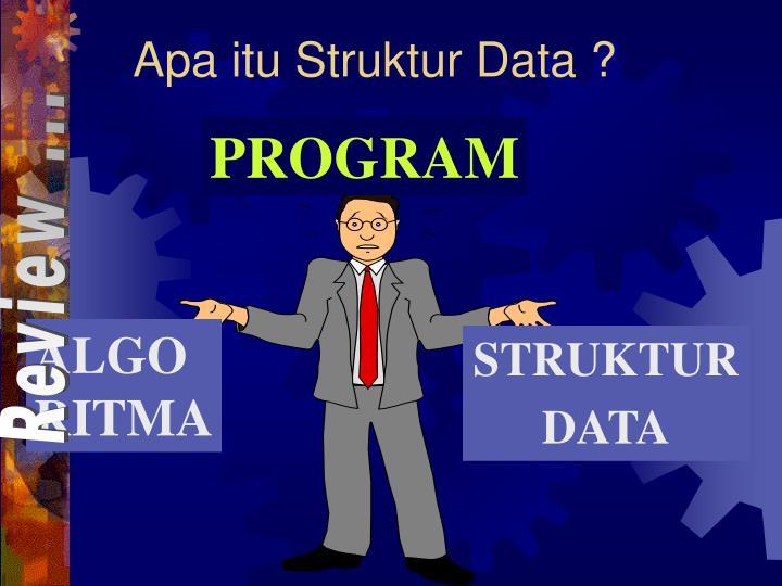 Apa itu struktur data
