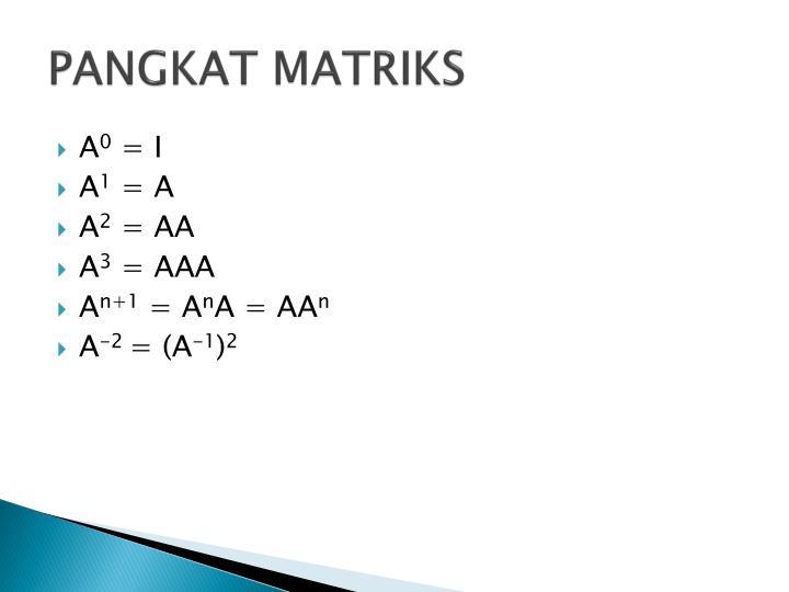 PANGKAT MATRIKS