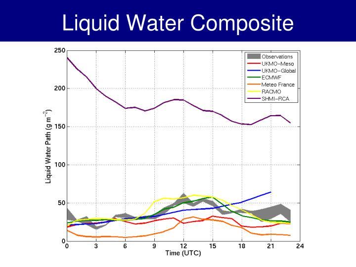 Liquid Water Composite