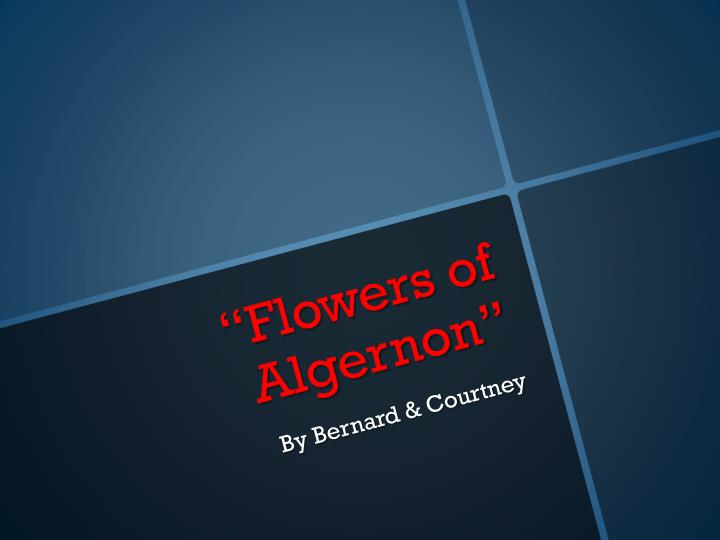 flowers of algernon n.