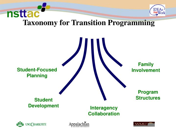 Taxonomy for Transition Programming