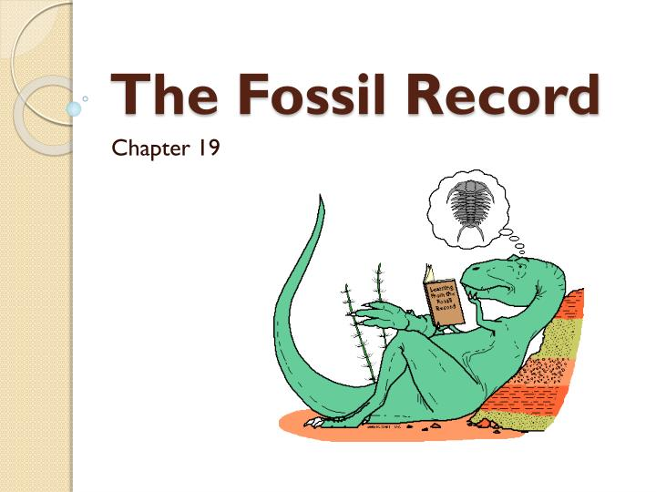 the fossil record n.