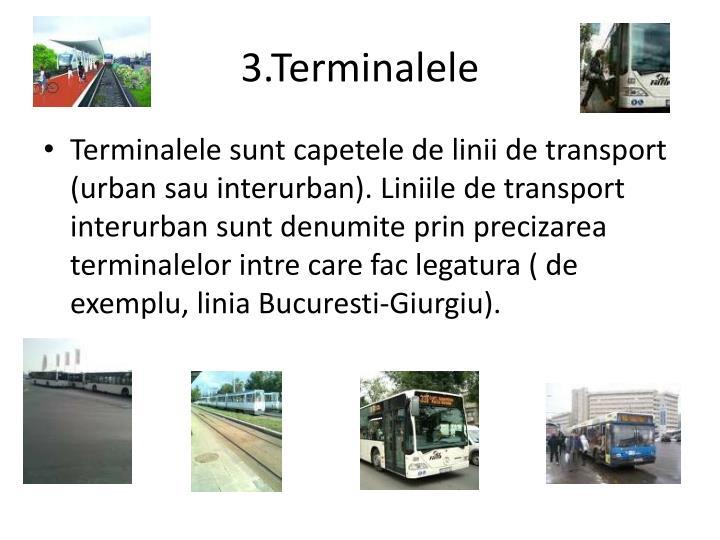 3.Terminalele