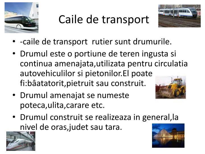 Caile de transport