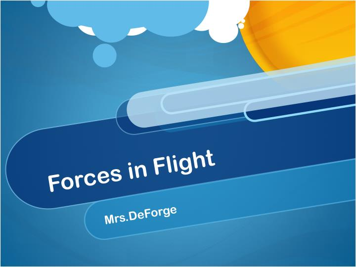 Forces in flight