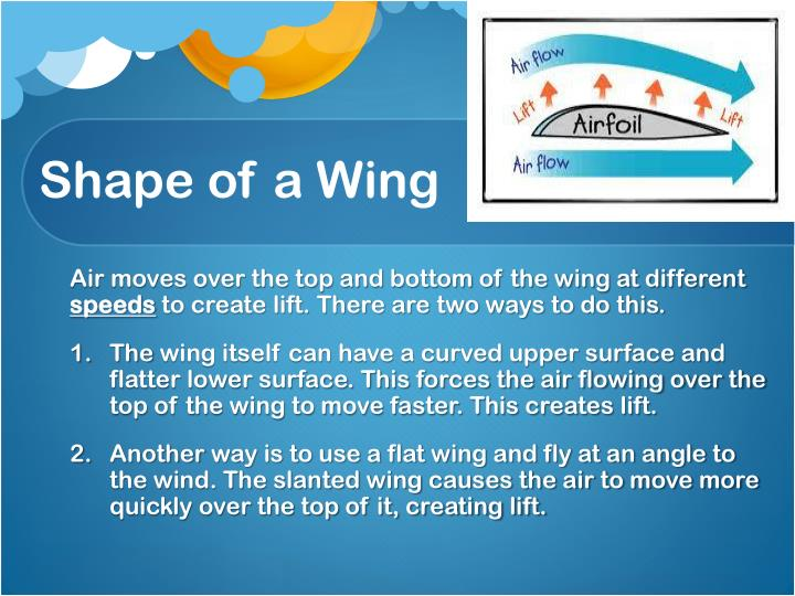 Shape of a Wing