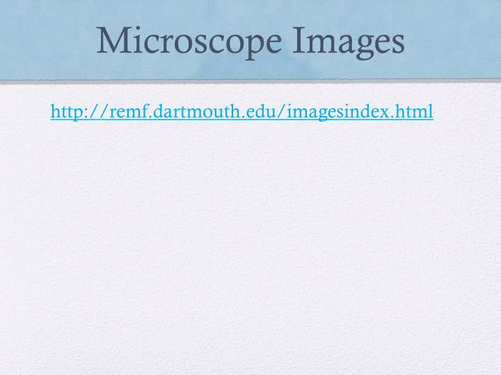 Microscope Images