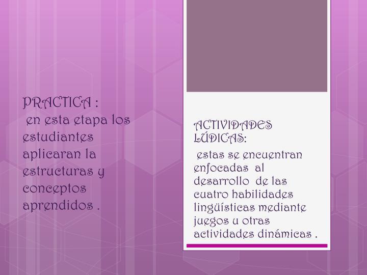 PRACTICA :