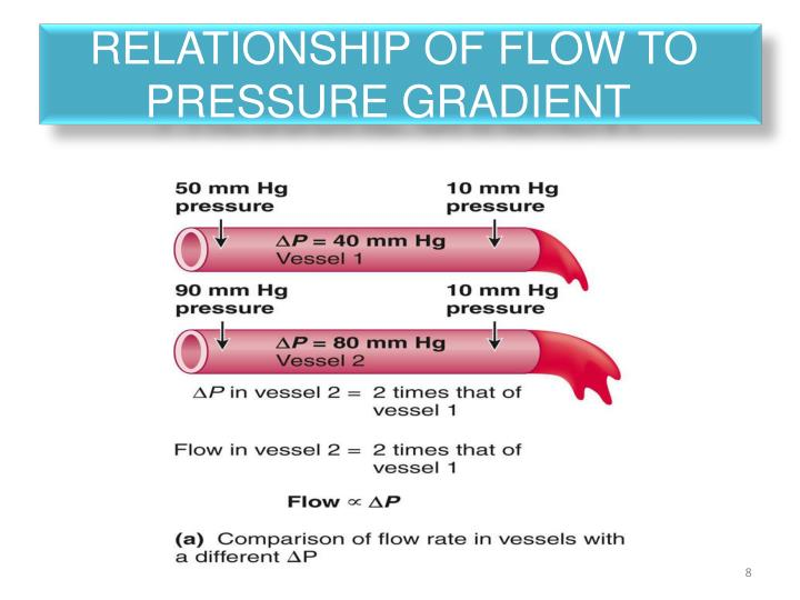 Relationship of flow to
