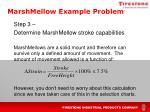 marshmellow example problem2