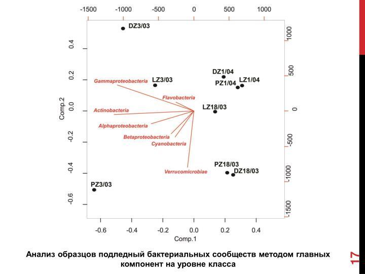 Анализ образцов подледный бактериальных сообществ методом
