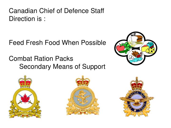 Canadian Chief of Defence Staff Direction is :
