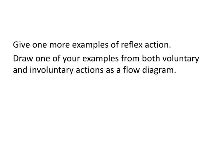 Ppt blinking powerpoint presentation id2732559 draw one of your examples from both voluntary and involuntary actions as a flow diagram sense organs and reflex arcs ccuart Choice Image