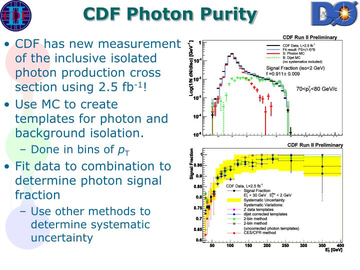 CDF Photon Purity