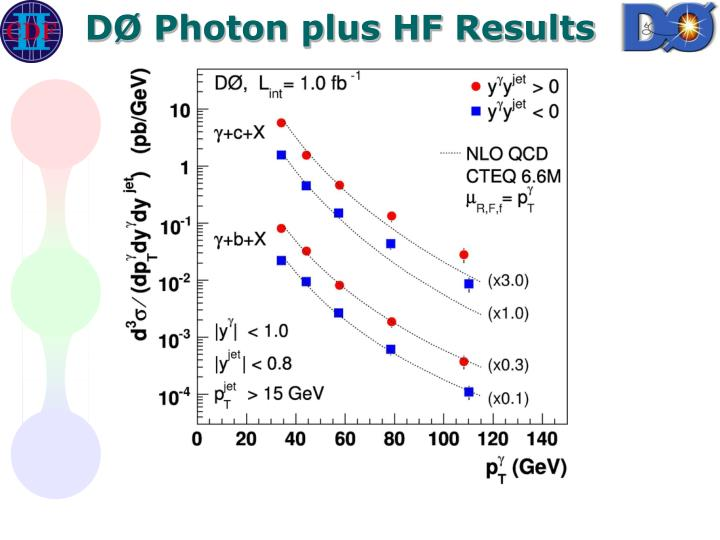 DØ Photon plus HF Results