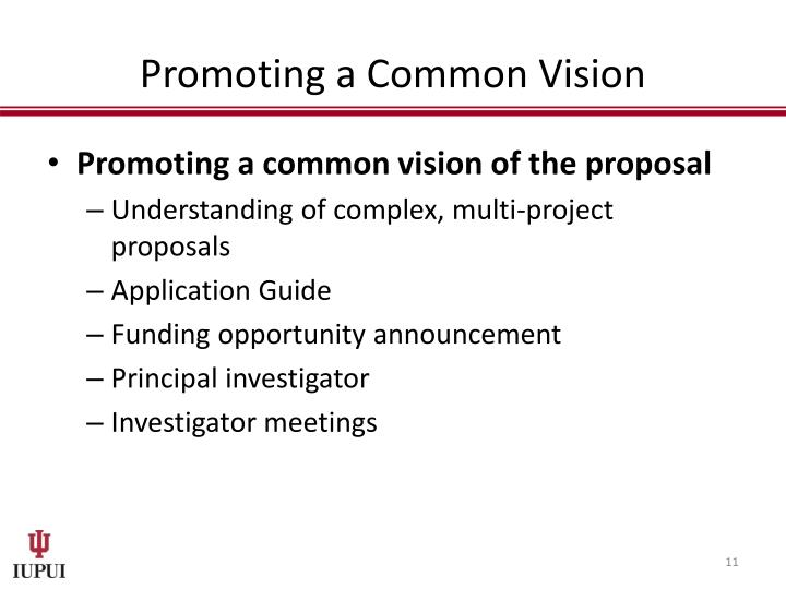 Promoting a Common Vision