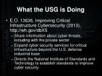 what the usg is doing