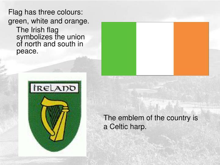 Flag has three colours: