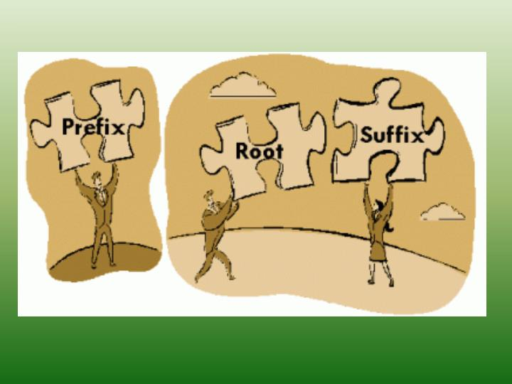 roots and affixes n.