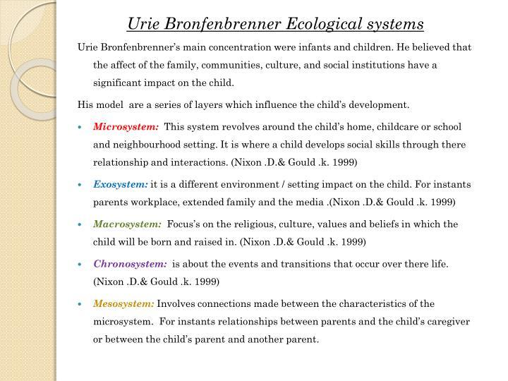macrosystem child development