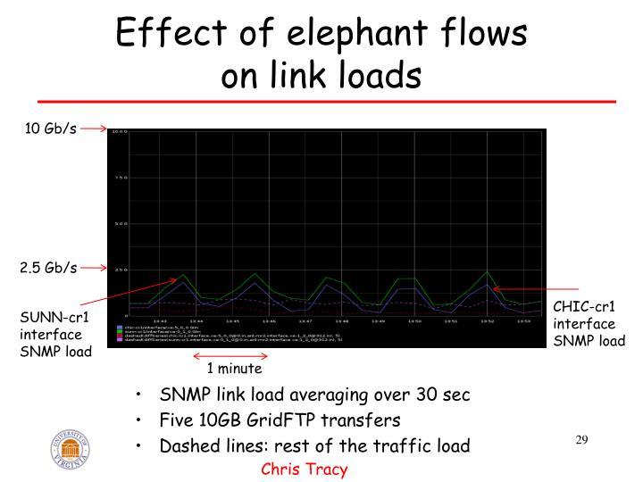Effect of elephant flows