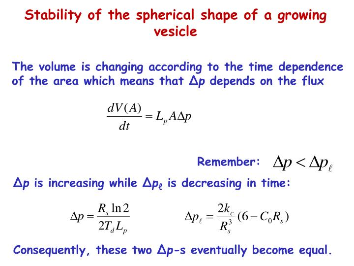 Stability of the spherical shape of a growing vesicle