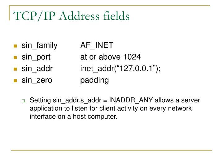TCP/IP Address fields
