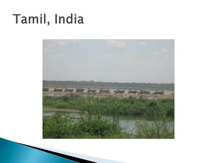 Tamil india