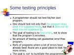 some testing principles