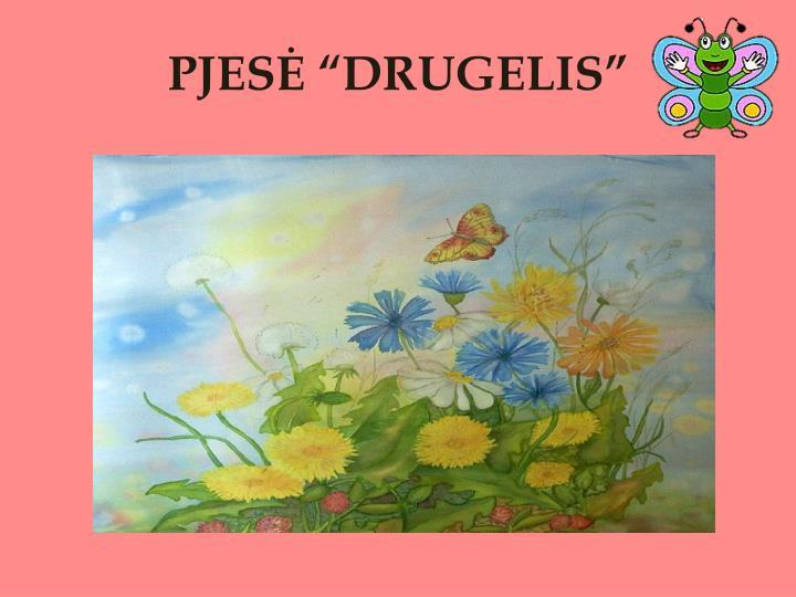 """PJESĖ """"DRUGELIS"""""""